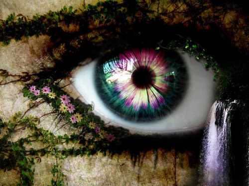 The Looking Glass... Eye