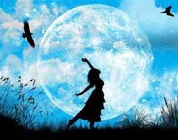 blue moon garden